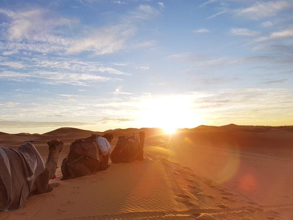 Desert du Sahara au Maroc