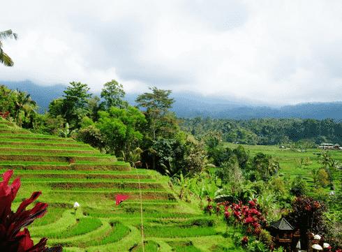 Guide de voyage: que faire et voir à Bali? (avec carte des hotspots)