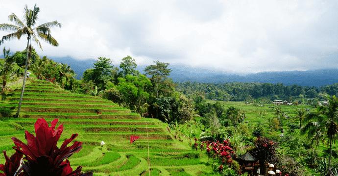 Carte Bali Chose A Voir.Guide De Voyage Que Faire Et Voir A Bali Avec Carte Des