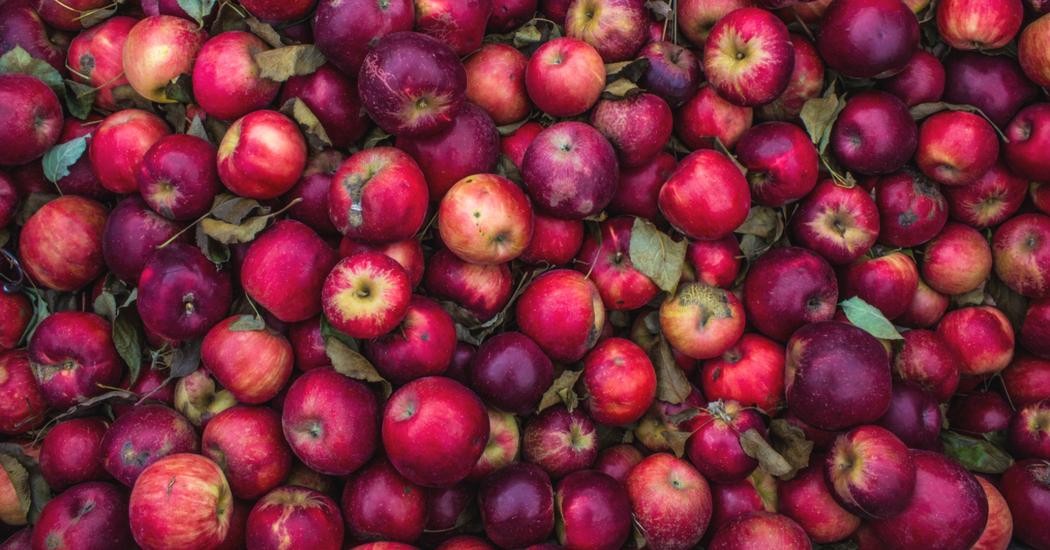 Le vinaigre de cidre de pomme, l'élixir dont vous ne pourrez plus vous passer