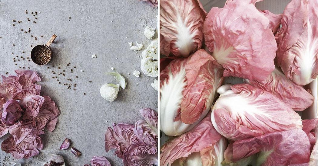 La Radicchio del Veneto, la salade naturellement rose