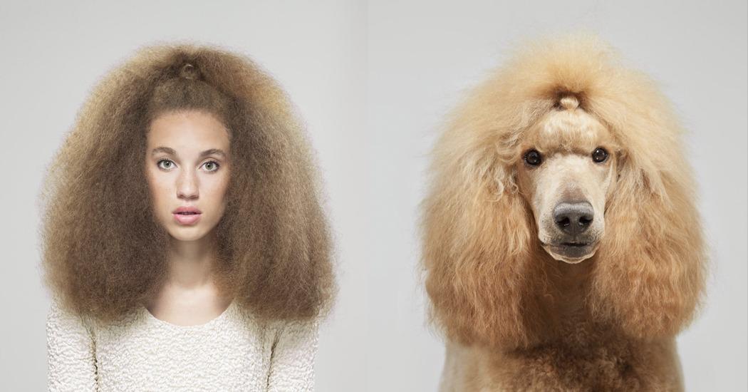Un photographe collectionne les photos de sosie entre chiens et humains