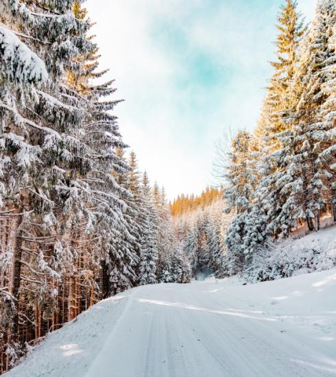 Évasion : où profiter de la neige en Belgique ?