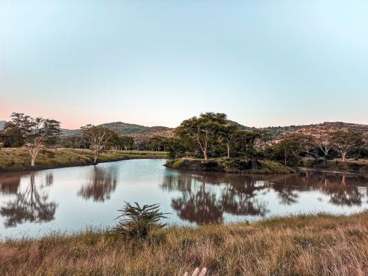 Carnet de voyage : L'Afrique du Sud dans les pas des Big Five 150*150