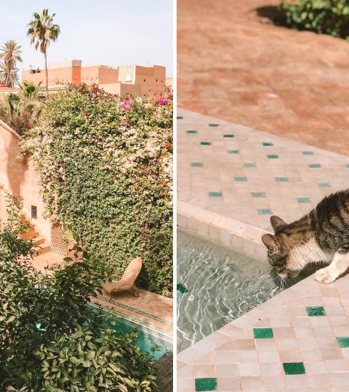 Maroc : le Palais Oumensour, petit coin de paradis au coeur de Taroudant