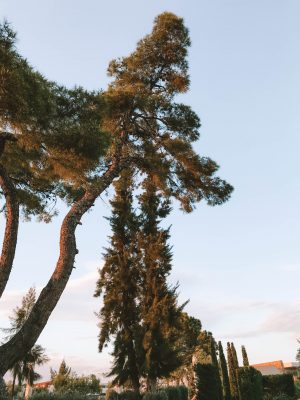 Grèce : Ikos Olivia, l'hôtel qui fait rimer all-in avec luxe sur-mesure 150*150