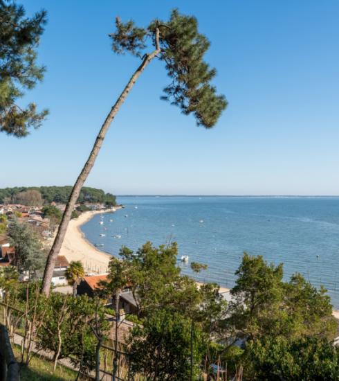 Cap Ferret : les adresses incontournables pour des vacances au paradis