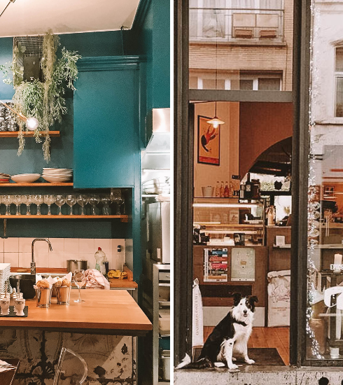 6 bons restaurants dog-friendly à Bruxelles