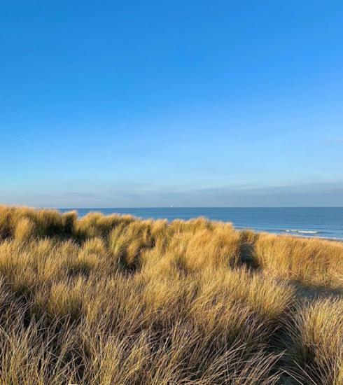 Knokke : 11 activités à faire sur la côte cet été