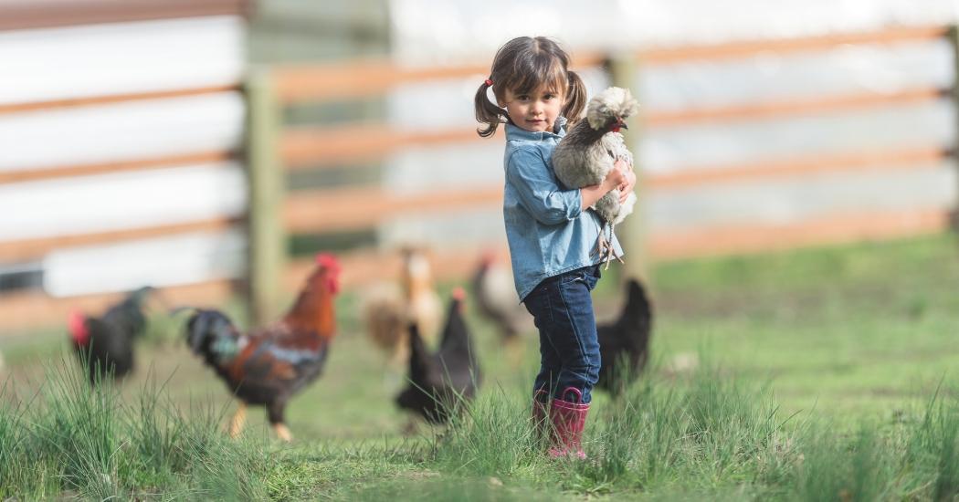 9 activités kids-friendly à tester en province de Luxembourg