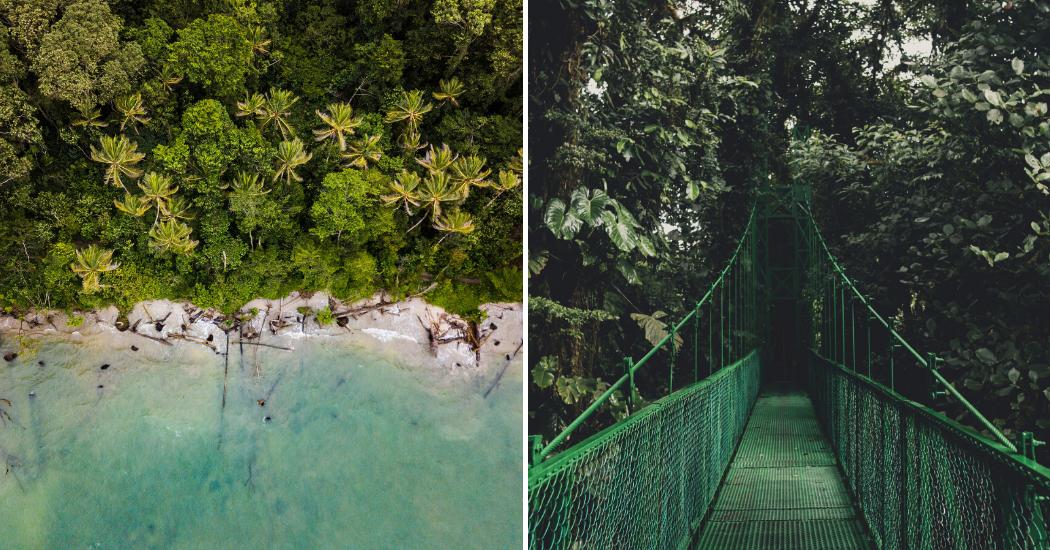 Carnet de voyage : 8 choses à faire et à voir au Costa Rica, le paradis vert