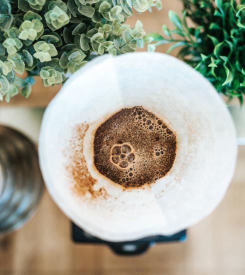 4 manières de réutiliser votre marc de café