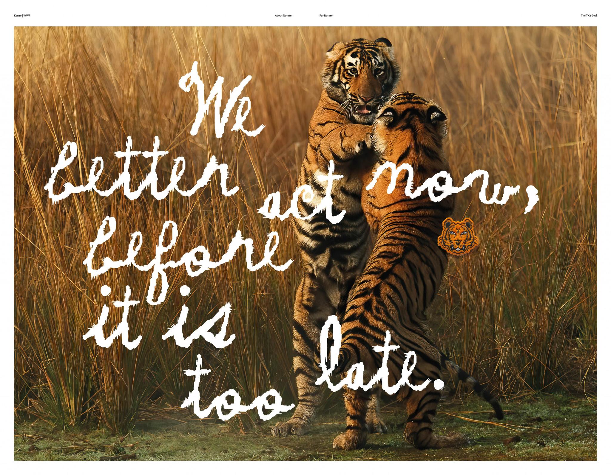 KENZO x WWF tigres