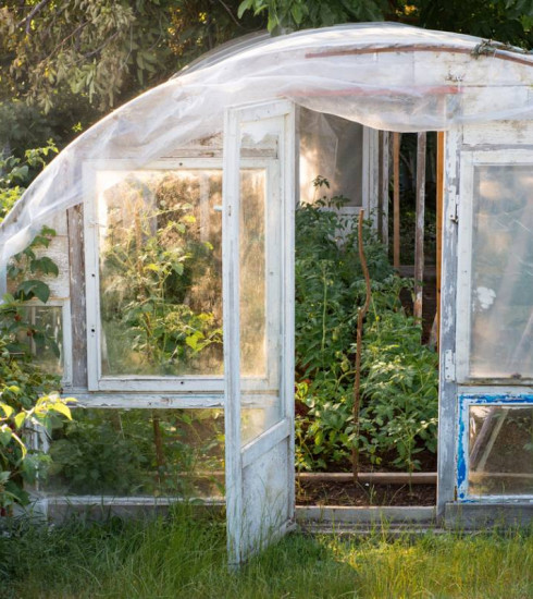 Jardin bio : utiliser les serres