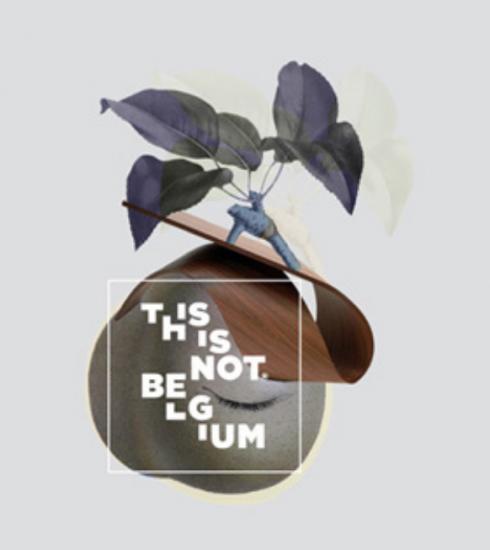 «This is not Belgium», l'e-shop qui met en avant les artistes et artisans belges