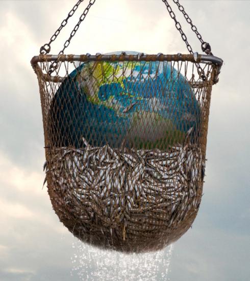 Seaspiracy : 9 infos mises en lumière par le documentaire (et leur véracité)
