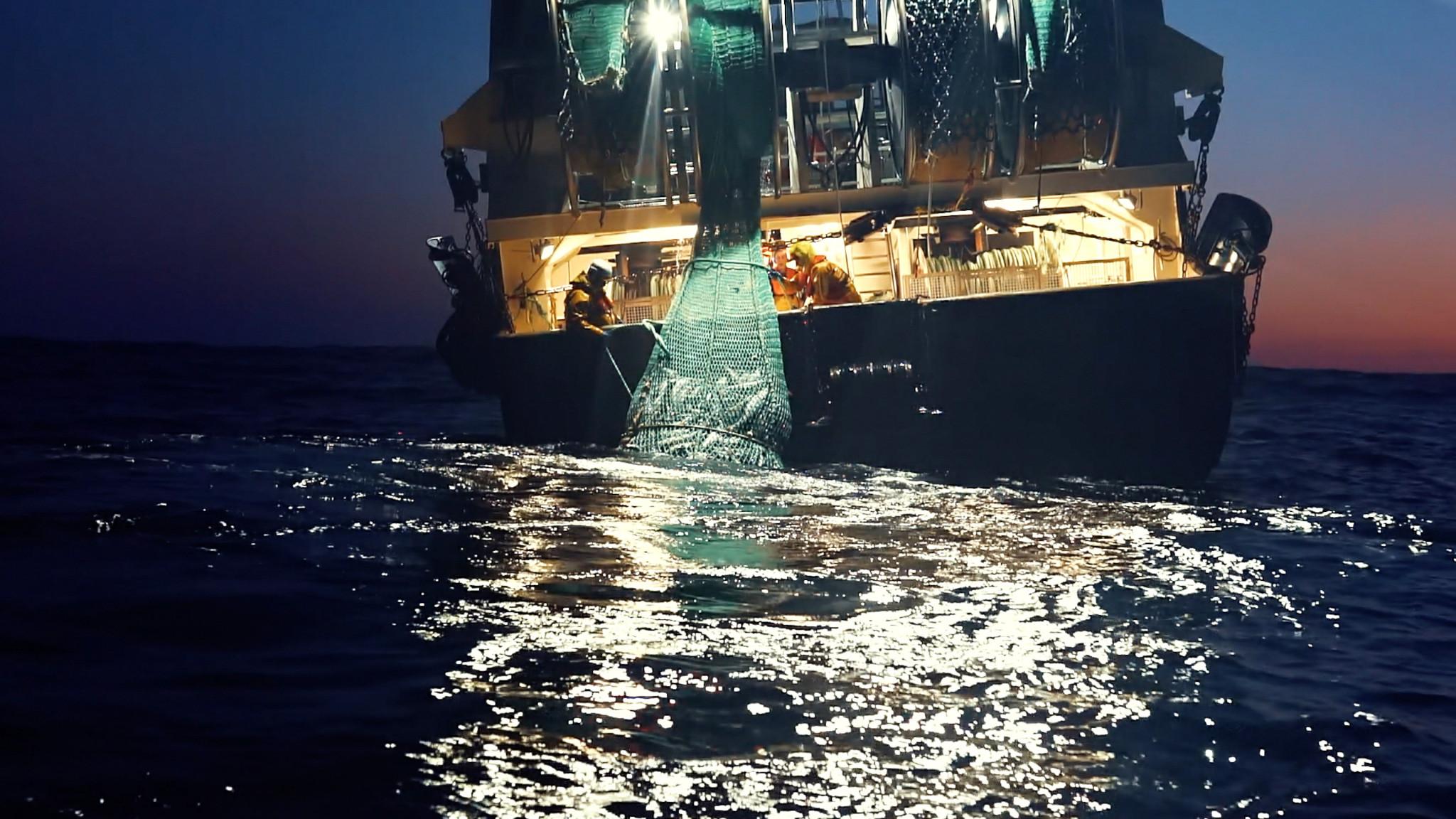 Seaspiracy : 9 infos mises en lumière par le documentaire (et leur véracité) - 1