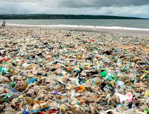 Dag van het Milieu: 14 tips voor een schonere wereld
