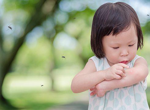 Getest: bye bye muggen!