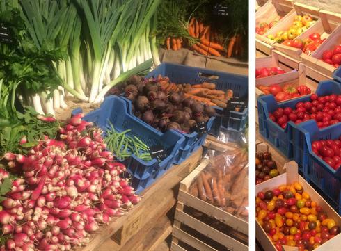Onze favoriete vers- en biosupermarkten
