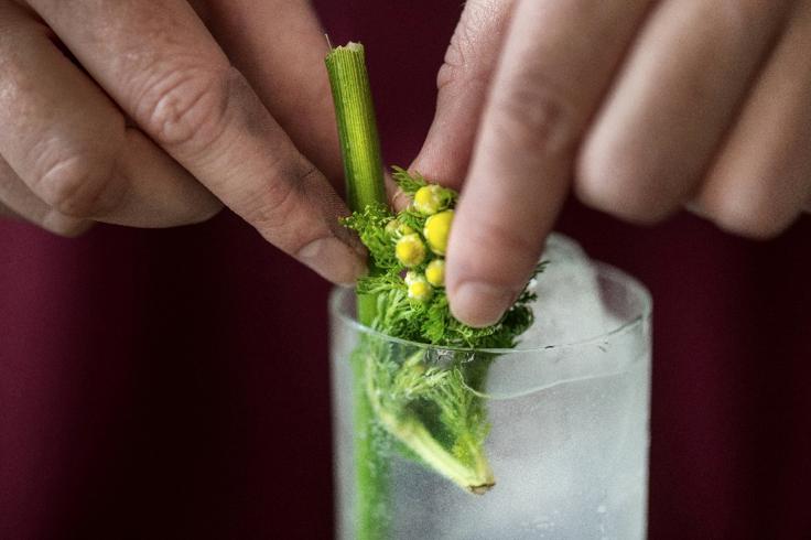 Collins The Botanist gin