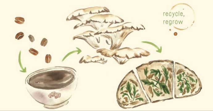 Caffungi x Le Pain Quotidien: van koffieboon tot oesterzwam