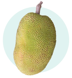 pinterest-lifestyle-trends-jackfruit