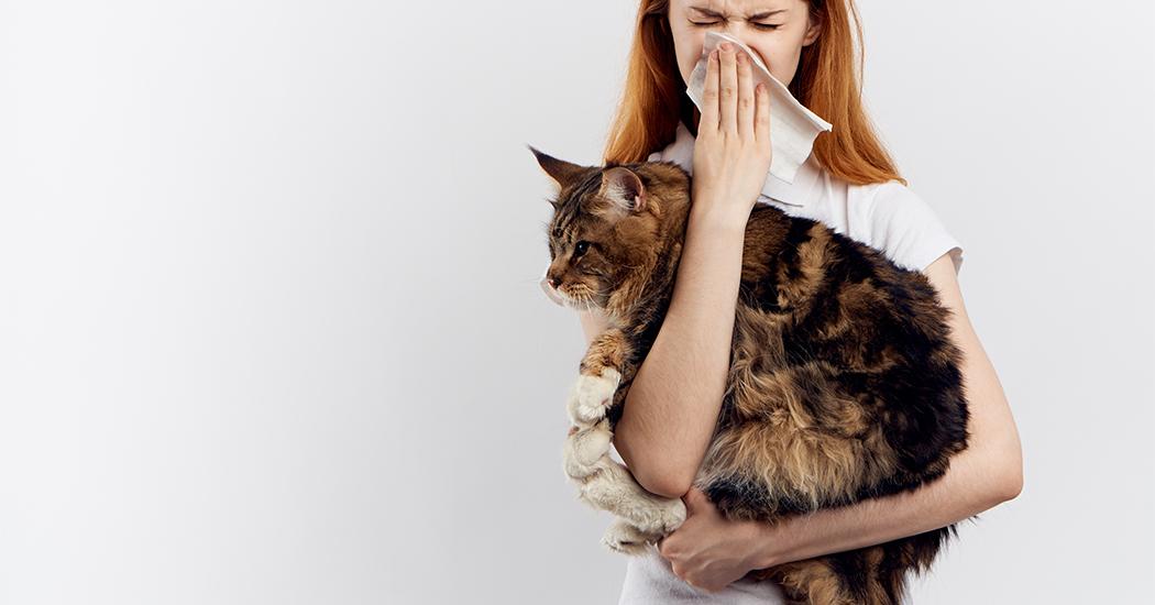 Gezondheid: zo maak je komaf met winterallergieën!
