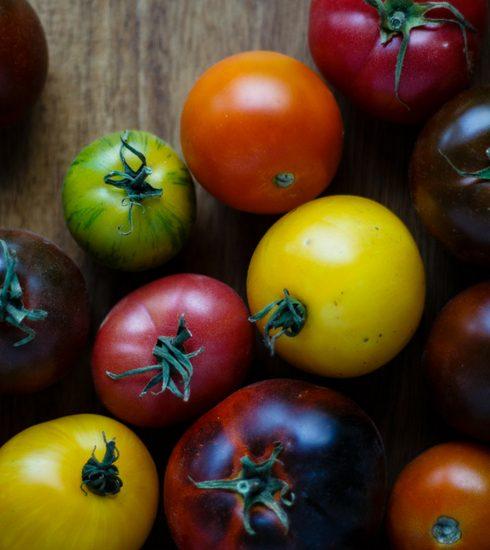 Weekendtip: het Brussels Tomato Festival, het kleurrijkste festival van België