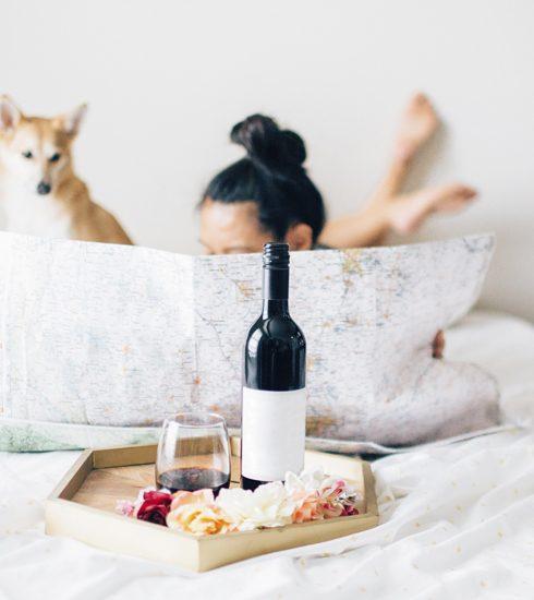 Wetenschappelijk bewezen: je huisdier bepaalt je alcoholvoorkeur