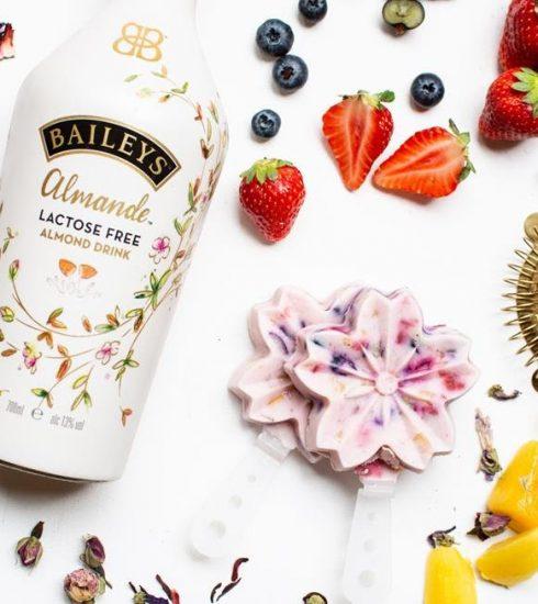 2 vegan dessertjes met Baileys