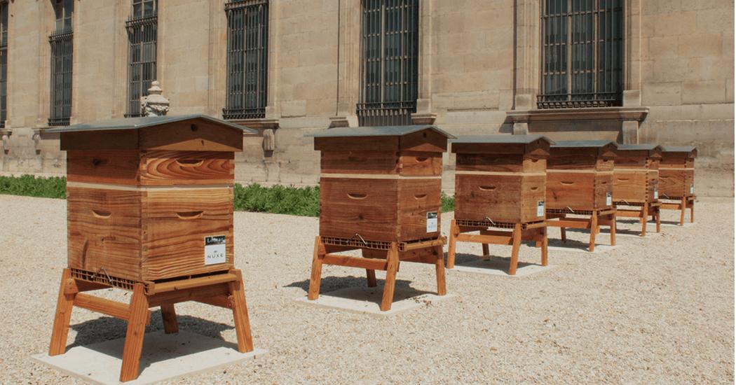 Cosmeticamerk Nuxe en het Louvre zetten zich samen in voor bijen