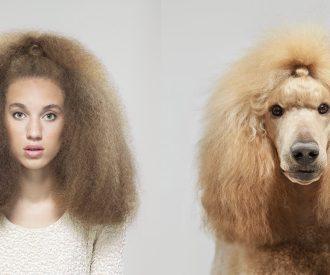 honden_lookalikes_marieclaire