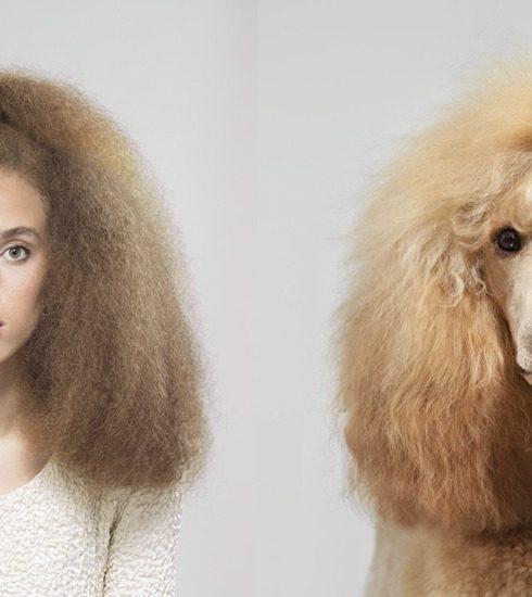 Brits fotograaf verzamelt meest frappante hond-mens lookalikes