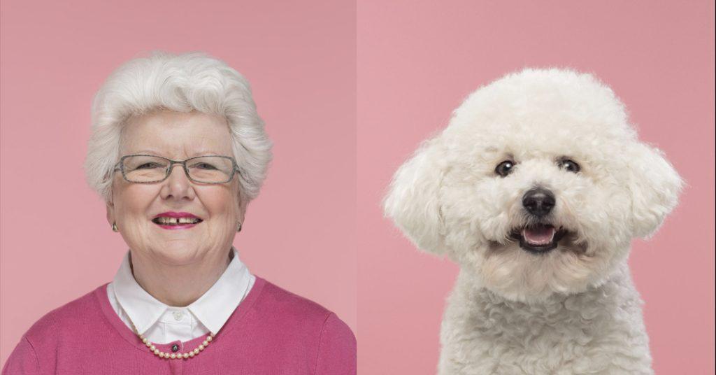 Brits fotograaf verzamelt meest frappante hond-mens lookalikes - 1