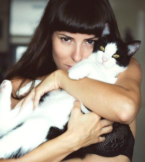 Hebben: het Crazy Cat Lady Boek, een life guide voor kattenliefhebbers