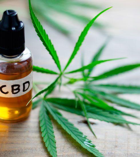 CBD-olie: wat is het, wat doet het en waar kan je het kopen?