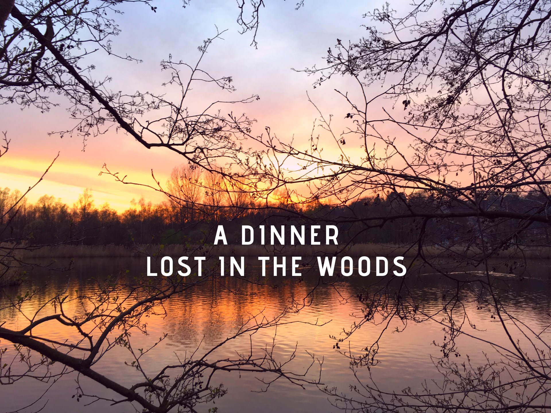 Marie Claire 'A Dinner Lost In The Woods'