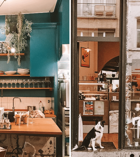 Dogs allowed: 6 hondvriendelijke restaurants in Brussel
