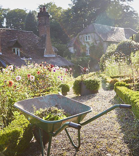 4 tips zodat je tuin de hittegolf overleeft