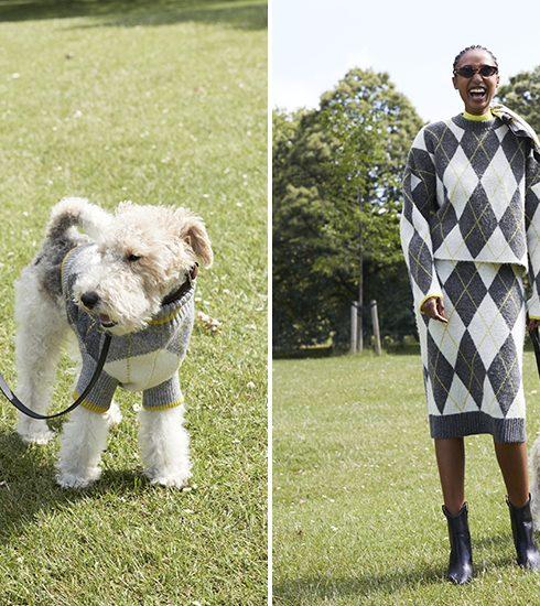 H&M verkoopt matching truien voor honden en hun baasjes
