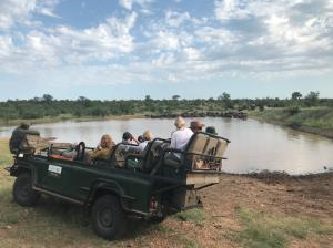 Reisverslag: Zuid-Afrika voor beginners - 6