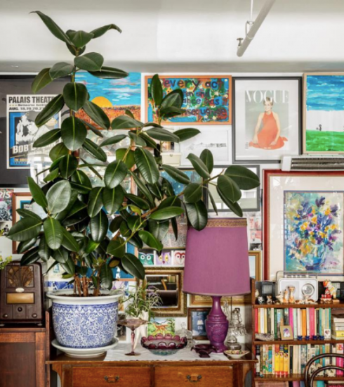 Deze kamerplanten wil je dit jaar in huis halen