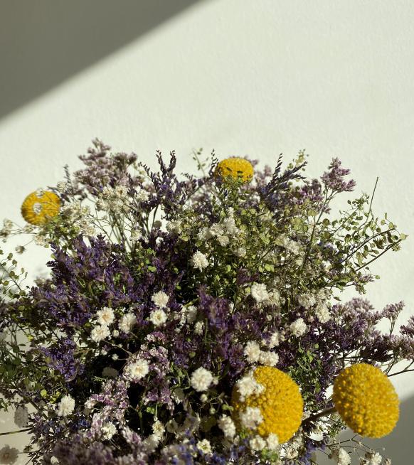 Hier koop je de mooiste droogbloemen in België
