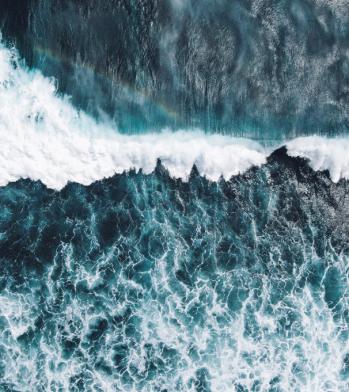 8 schokkende feiten over de oceaan die je wakker schudden
