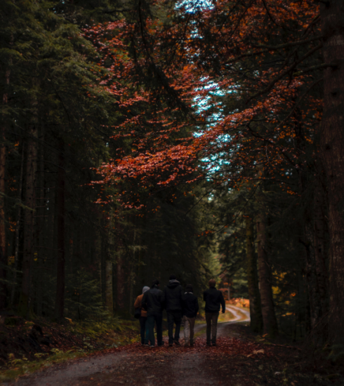 5 wandelroutes in België voor het goede doel