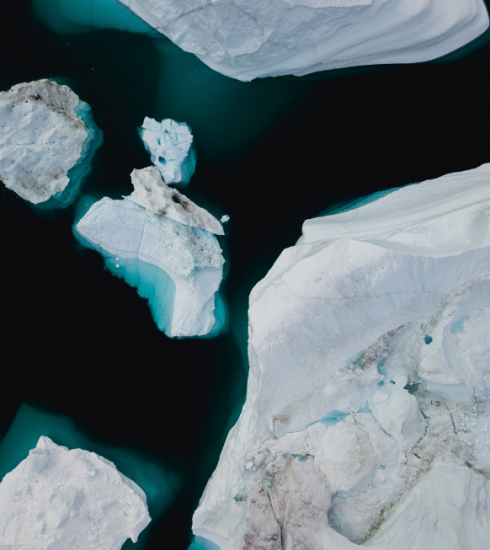 Dit kan je zelf doen om een klein maar impactvol verschil te maken voor het klimaat