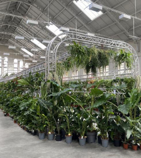 Meer dan 10.000 planten op nieuwe editie van PUP in Elsene